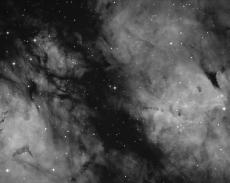 IC 1318 Schmetterling Ha Bild mit dem SW PDS 200/1000