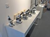 Nicht nur Teleskope werden von uns optimiert, sondern auch Mikroskope