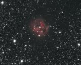 Cocoon-Nebel mit 130PDS Photonewton, QSI 540
