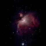Orionnebel M42 mit Swarovski Spektiv und ATIK Horizon